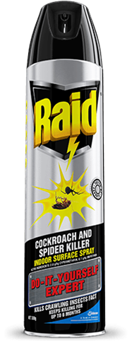 RAID TESTED BY EXPERTS COCKROACH AND SPIDER KILLER INDOOR SURFACE SPRAY