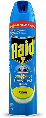 RAID KILLS FLYING INSECTS IN ONE SHOT FLYING INSECT KILLER CITRUS