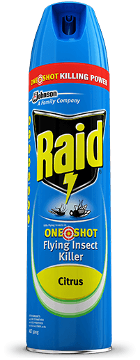 Power Ant Fly : Raid one shot flying insect killer citrus