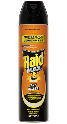 RAID MAX ANT KILLER SURFACE SPRAY